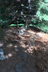 Pine needle Labyrinth