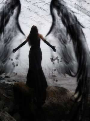 When Angel Wings and The Dark Mother Collide